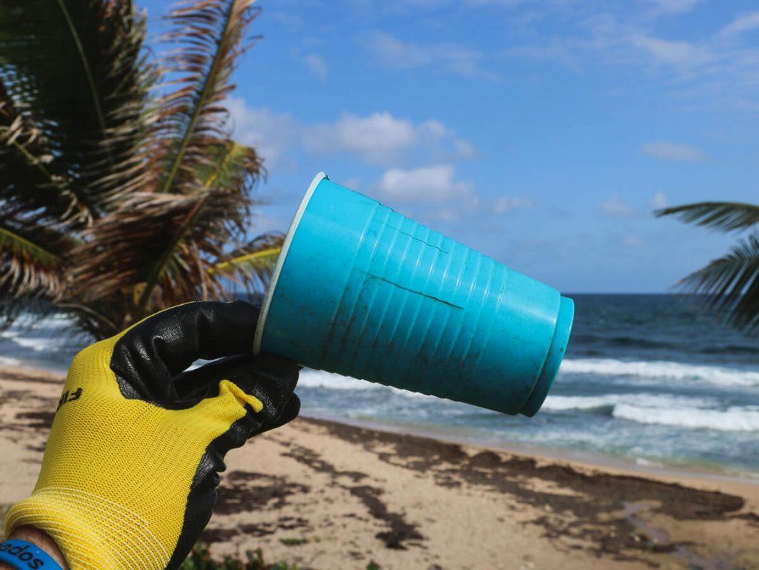 CleanWorld, come guadagnare raccogliendo rifiuti